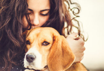 6 Causes You Ought to Get The Canine You have All the time Needed