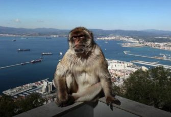 Why Gibraltar is British - in 60 secs